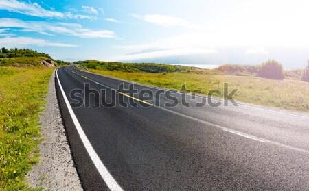 Boş yol oto seyahat Norveç Avrupa Stok fotoğraf © kyolshin