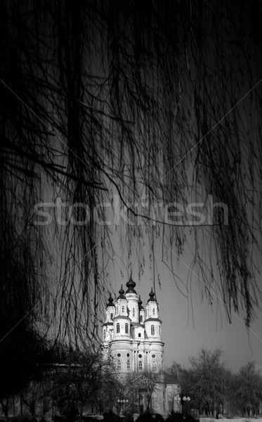 Winter view of Orthodox church through branches. Stock photo © kyolshin