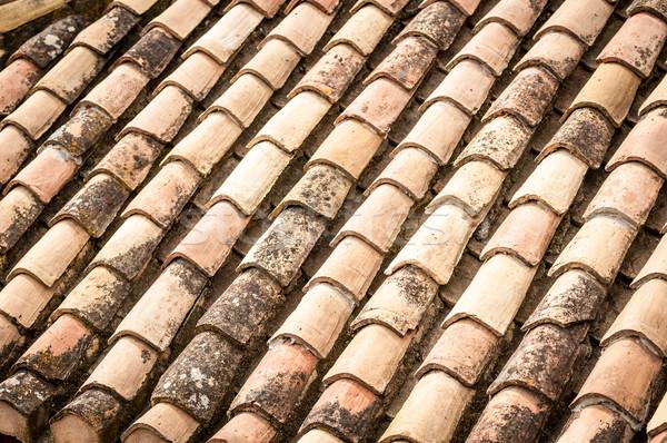 Telhado telha folhas água Foto stock © kyolshin