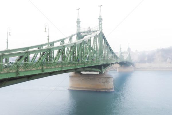 свободы моста Будапешт Венгрия Дунай реке Сток-фото © kyolshin