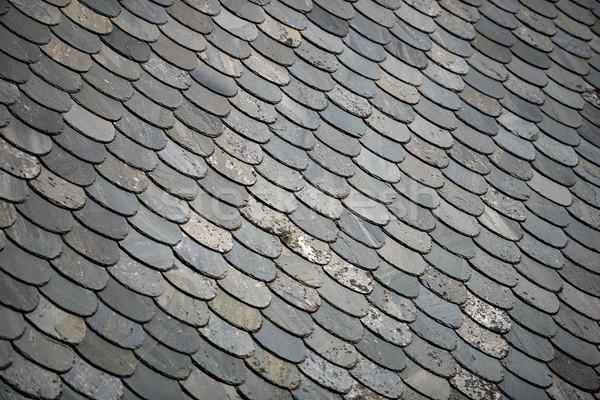 Eski taş kiremitli çatı Norveç Avrupa Stok fotoğraf © kyolshin