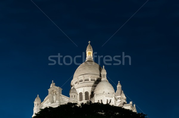 Night view of Basilica of the Sacred Heart of Paris. Stock photo © kyolshin