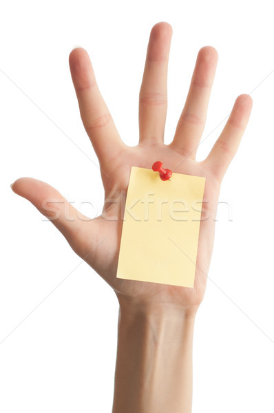 Stock photo: female hand with blank note
