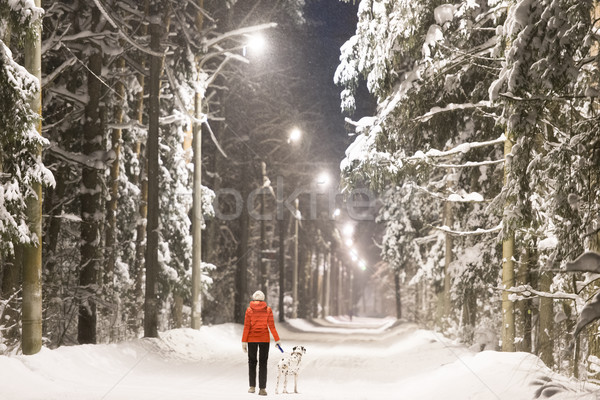 Girl and dog in winter forest covered with snow Stock photo © kyolshin