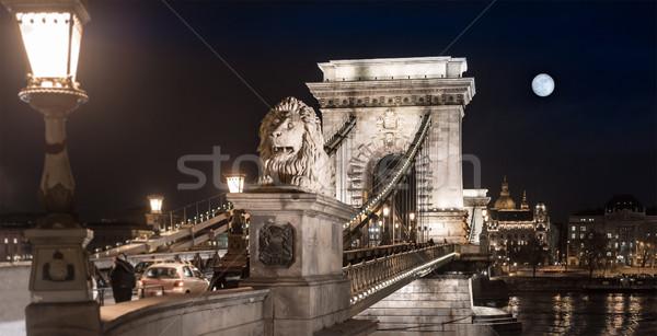 Chain bridge in Budapest, Hungary, Europe. Stock photo © kyolshin