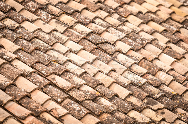 Roof tile with leaves and water in rows. Stock photo © kyolshin