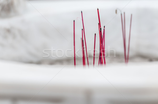 Burning red sticks for worship in buddhist temple. Stock photo © kyolshin