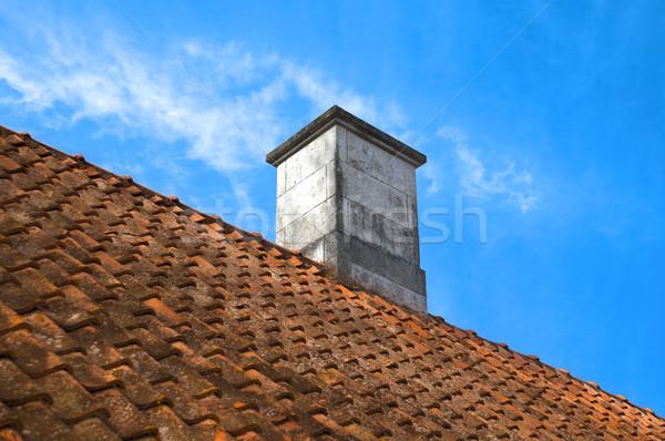 タイル張りの 屋根 先頭 煙突 青 曇った ストックフォト © kyolshin
