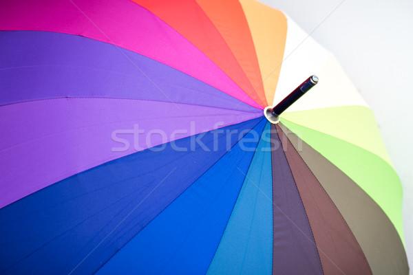 Görmek çok renkli şemsiye soyut kırmızı Stok fotoğraf © kyolshin