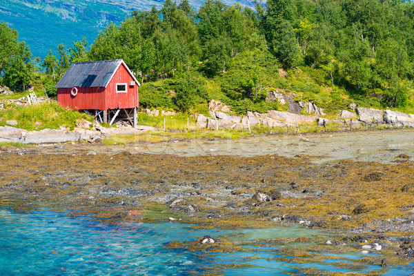 Barn in Norway, Europe. Mountain, river and forest Stock photo © kyolshin