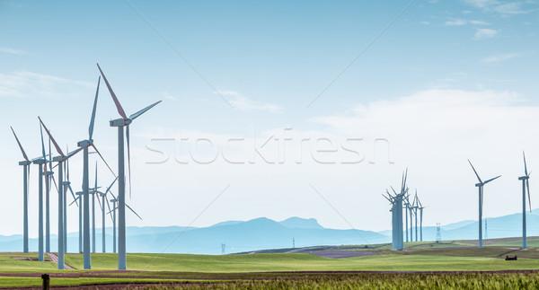 Szélturbinák zöld mező kék ég sorok mezők Stock fotó © kyolshin