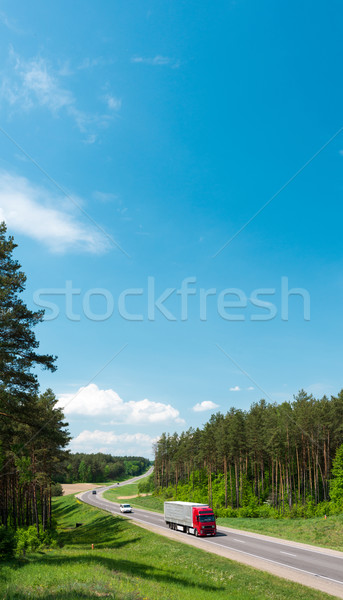 Truck and cars on road in forest. Belarus. Stock photo © kyolshin