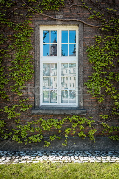 Tükröződés kastély öreg ablak Krakkó gyönyörű Stock fotó © kyolshin