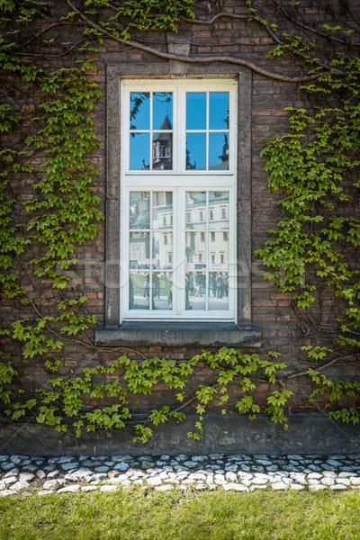 Reflexão castelo velho janela cracóvia belo Foto stock © kyolshin