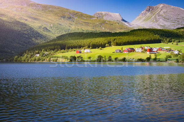 Norway country houses. Lake and meadows. Stock photo © kyolshin