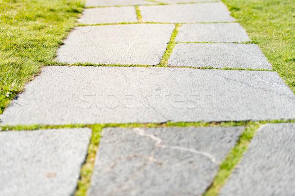 каменные дороги трава пути парка зеленая трава Сток-фото © kyolshin