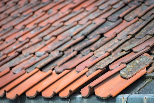 Oude steen betegelde dak Noorwegen Europa Stockfoto © kyolshin