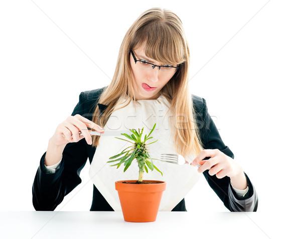 Foto stock: Alimentação · saudável · mulher · de · negócios · bom · saudável · negócio