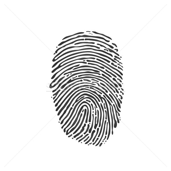 Black Fingerprint icon on white background. Vector illustration. Stock photo © kyryloff
