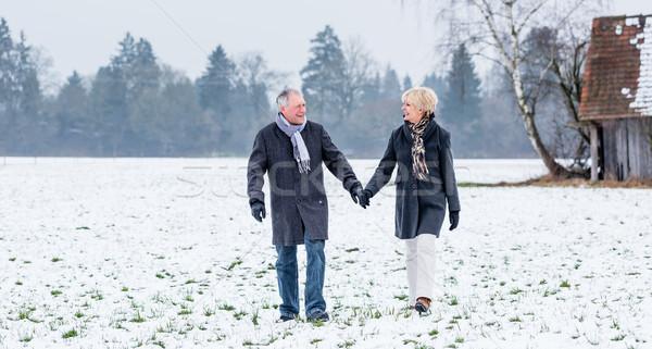 Pareja de ancianos caminata invierno mujer manos hombre Foto stock © Kzenon