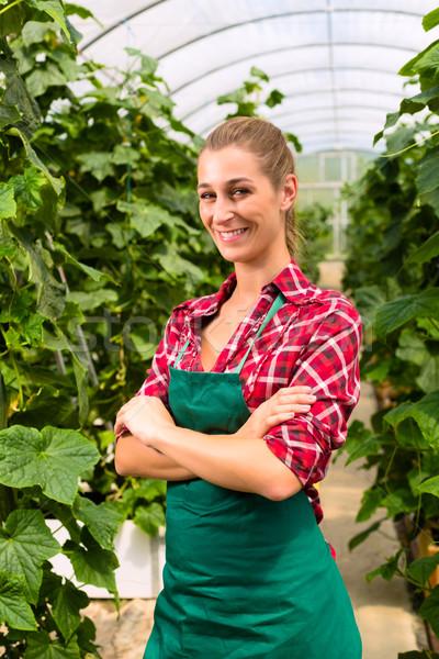 женщины коммерческих садовник теплица растительное Сток-фото © Kzenon