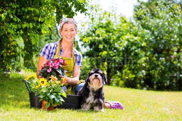 女性 庭園 花 ペット 犬 幸せ ストックフォト © Kzenon