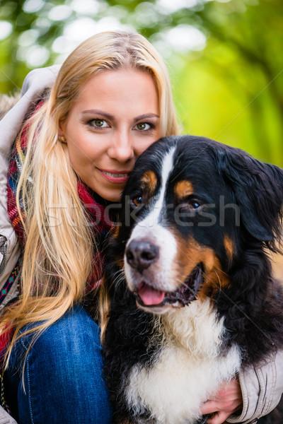 Kobieta berneński pies pasterski jesienią parku kolorowy Zdjęcia stock © Kzenon
