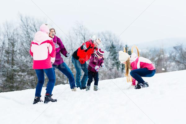 家族 子供 雪玉 戦う 冬 楽しい ストックフォト © Kzenon