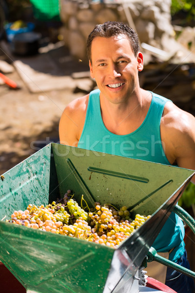 Man working with grape harvesting machine   Stock photo © Kzenon