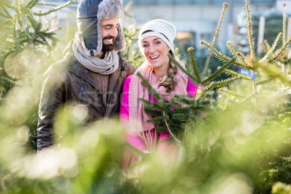 Сток-фото: пару · покупке · рождественская · елка · рынке · глядя · человека