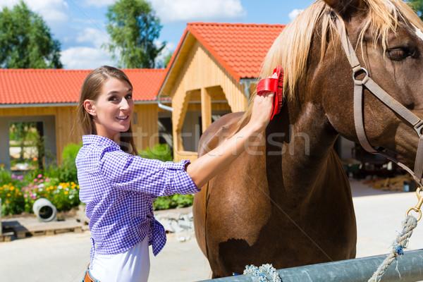 Foto stock: Mulher · jovem · estável · cavalo · sol · paisagem