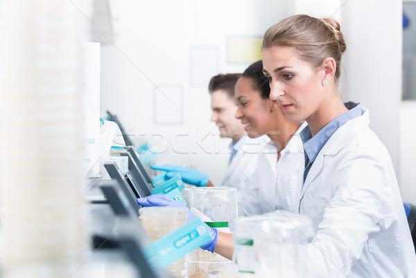 Groupe travaux laboratoire femme Photo stock © Kzenon