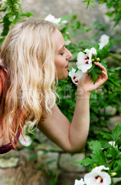 Woman in garden sniffing at flowers Stock photo © Kzenon