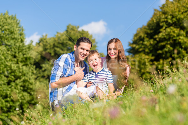 Family sitting on meadow with child waving hands Stock photo © Kzenon