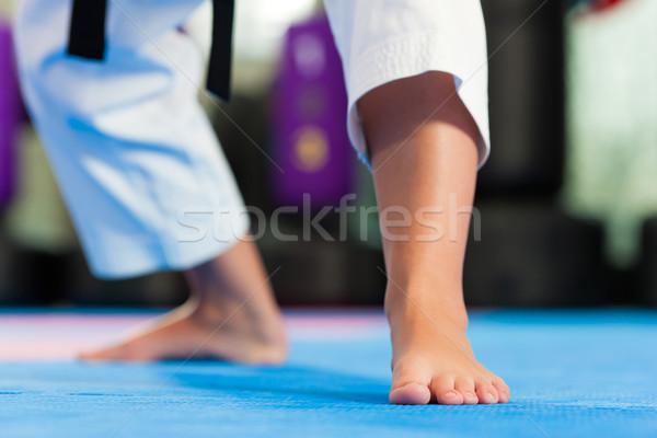 Martial Arts sport training in gym Stock photo © Kzenon
