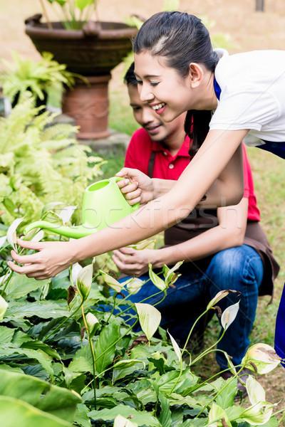 Fiatal nő zöld locsolókanna kert boldog partner Stock fotó © Kzenon