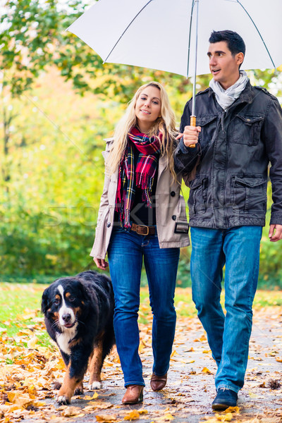 Woman and man having walk with dog in autumn rain Stock photo © Kzenon