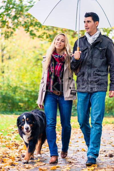 Mujer hombre caminata perro otono lluvia Foto stock © Kzenon