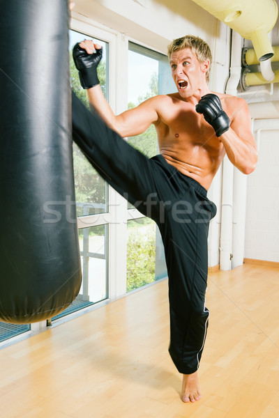 Martial Arts Kick Stock photo © Kzenon