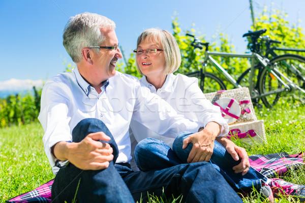 Zdjęcia stock: Starszy · kobieta · człowiek · piknik · łące · lata