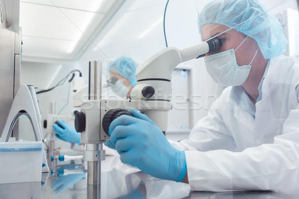 Iki laboratuvar bilim adamları çalışma laboratuvar bakıyor Stok fotoğraf © Kzenon