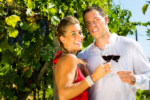 Woman keeping a glass wine in hand, man in background Stock photo © Kzenon