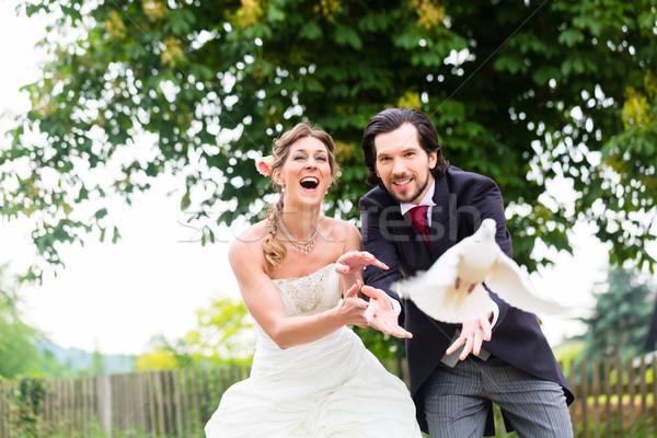 Paire battant blanche mariage Photo stock © Kzenon