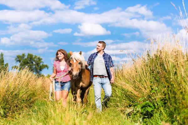 пару ведущий лошади лет луговой женщину Сток-фото © Kzenon