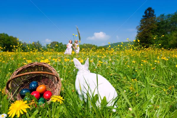 子供 イースターエッグハント バニー 草原 春 フォアグラウンド ストックフォト © Kzenon