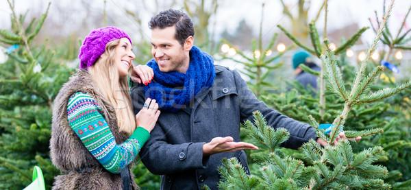 Stok fotoğraf: Kadın · adam · satın · alma · noel · ağacı · pazar · çift