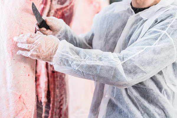 Hand of butcher in butchery cutting meat Stock photo © Kzenon