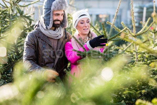Couple buying Christmas tree on market Stock photo © Kzenon