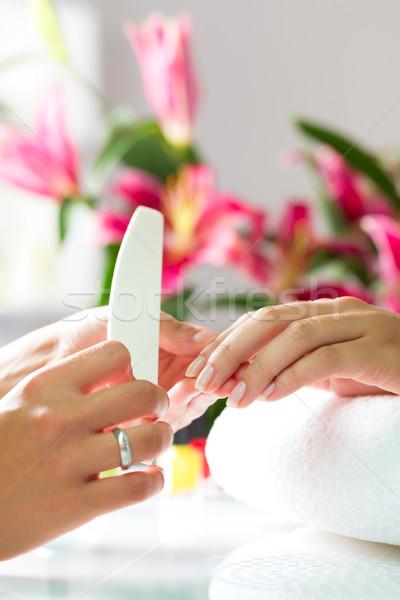 Stock fotó: Nő · manikűrös · manikűr · kezek · rózsa · nők