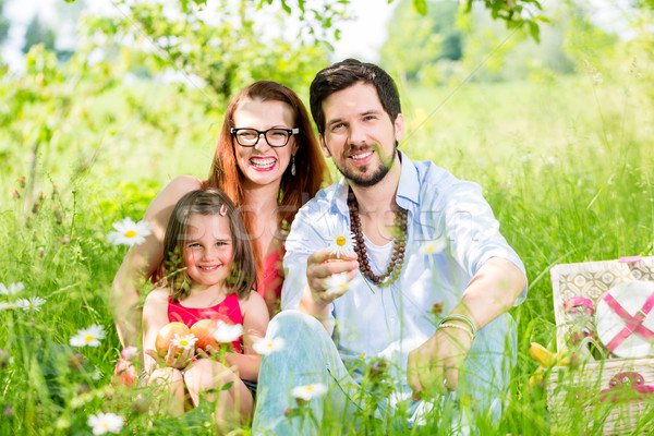 Family having picnic on meadow with healthy fruit Stock photo © Kzenon
